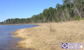 112+/- Acres w/ two miles of Sam Rayburn Water Front