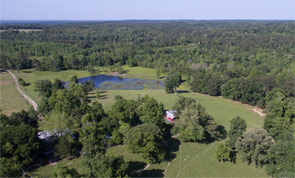 80+ Acres Rolling Hills Live Water Ranch